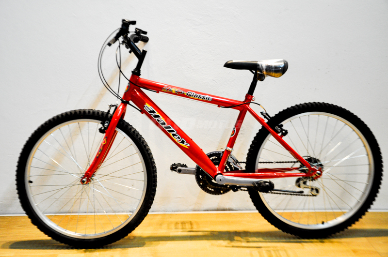 Moto Halley Bicicleta Halley MTB Classic R24 18V kids