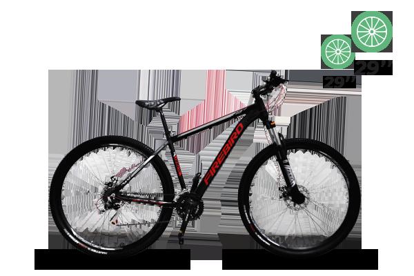Bicicleta MTB N.29 21 vel Shimano Bin29-21ECO (5) [M2808]