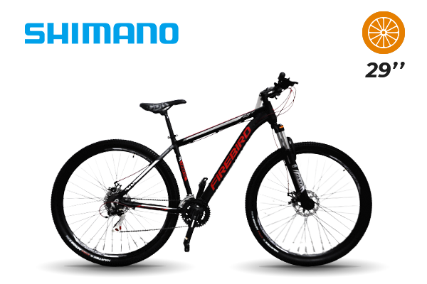 Bicicleta MTB N.29 21 vel Shimano Bin29-21ECO (22) [M2808]