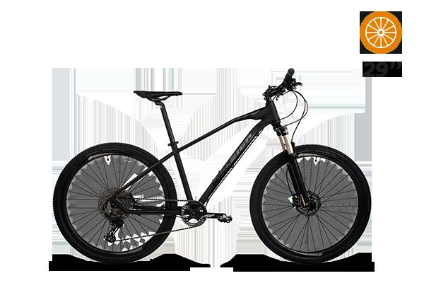Bicicleta RALEIGH MOJAVE 5.0 MTB N.29 BIN5.0 Linea 2021 (2) [M2915]