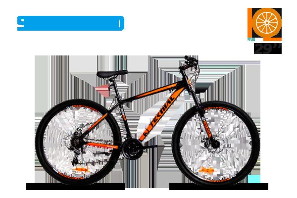 TARPAN 100ER Bicicleta (2) [M2779]
