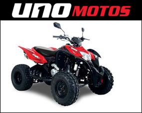 Cuatriciclo Terrain 250  X Deportivo