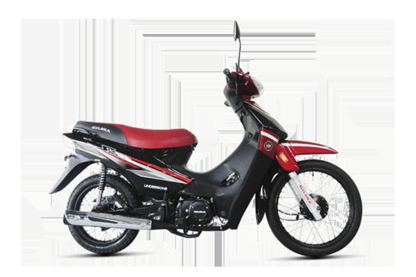 Smash 110 Automatica linea 2019 (7) [M1466]