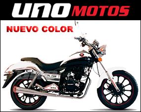 YL 200 Custom