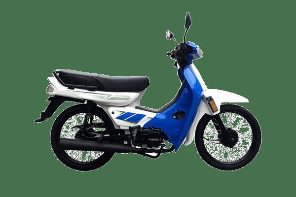 QJ 110 Econo (1)