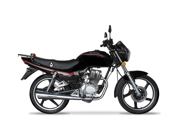 RD 150 H STD full linea 2019 (1)