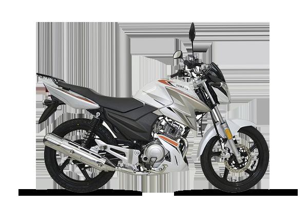 YBR 125cc Z linea 2021 (1) [M1199]