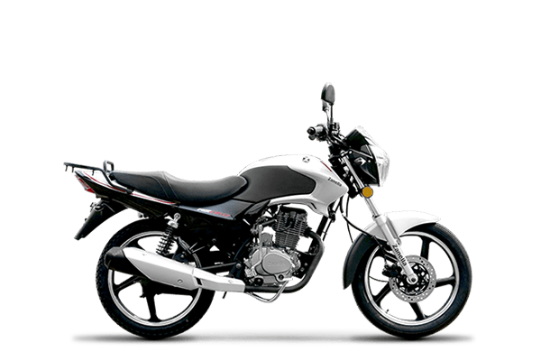 Rx 150 Z6 ghost 2019 (7) [M1193]