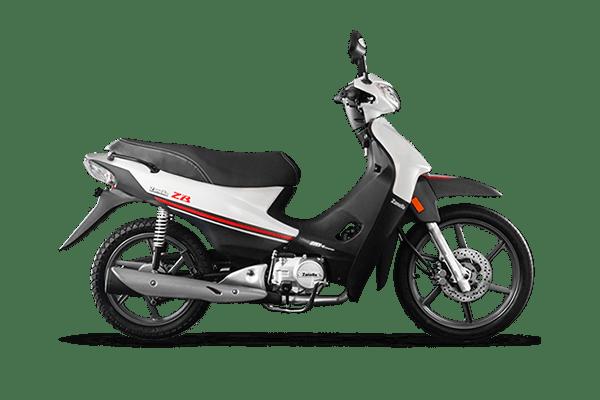 ZB 110 Z1 Full 2019 (4) [M1465]