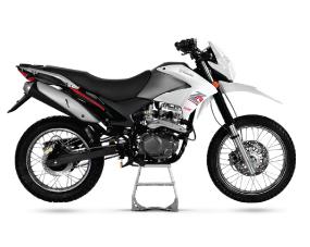 ZR 200 OHC